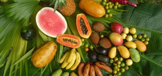 Mineralstoffe in den Früchten