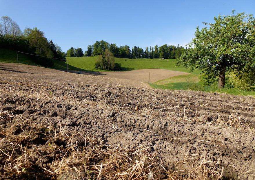 die 91 essentiellen Nährstoffe - Landwirtschaft