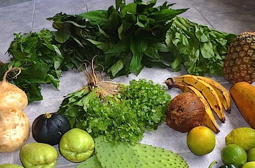 Grüne Blätter - Mineralstoffe