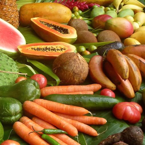 die 91 essentiellen Nährstoffe