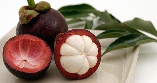 Antioxidantien in der Mangostan
