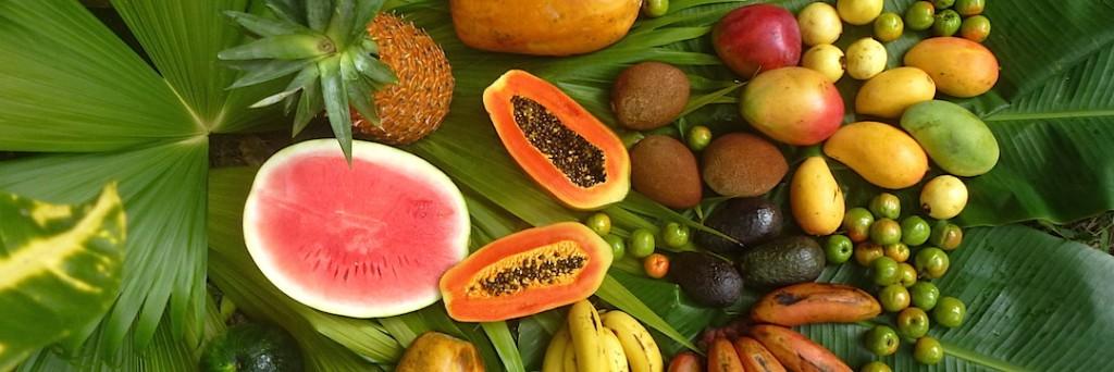 die 91 essentiellen Nährstoffe - Früchte