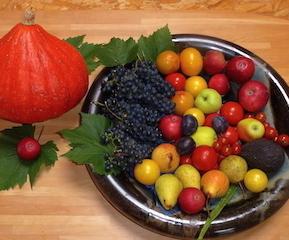Ayurveda-Sattva-Früchteschale