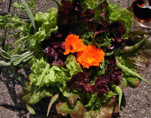 Salat bei Übergewicht