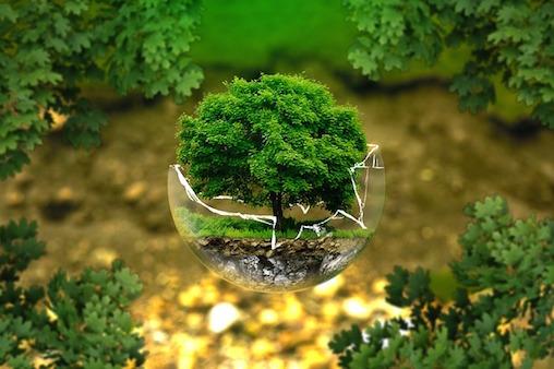 ionisch kolloidal - Baum