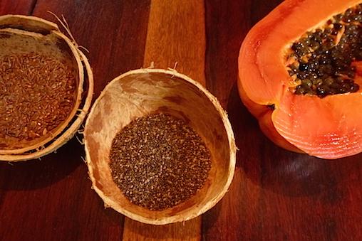 10Darm-reinigend-Papaya